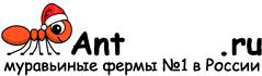 Муравьиные фермы AntFarms.ru - Волгоград